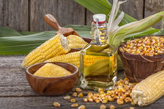 Corn with grits polenta and corn oil Stock Image