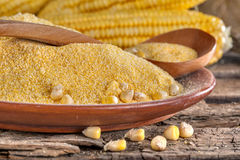 Corn grits polenta Stock Images