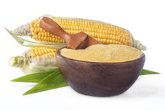 Corn with grits polenta Stock Image