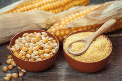 Corn grits and seeds in bowls, corncobs on kitchen table. Stock Photography