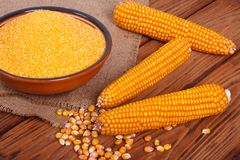 Corn groats in a bowl, whole grain and cob Royalty Free Stock Photography