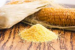 Corn groats and seeds Stock Photography