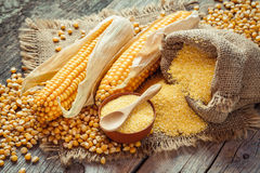 Corn groats and seeds, corncobs on wooden rustic table. Royalty Free Stock Photography