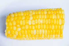 Corn. Half a corn cob on a white background Stock Image