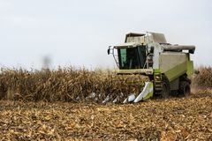 Corn harvest with combain Stock Photo