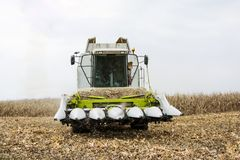 Corn harvest with combain Stock Image
