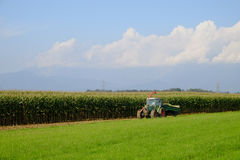 The corn harvest Stock Photography