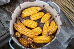 Corn. Harvest in the iron pan Stock Photos
