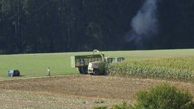 Corn harvest. A trasher-harvester during corn harvest stock video