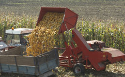 Corn Harvester Stock Photos