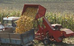Corn Harvester. Dumping gathered corn into a waiting trailer stock photos