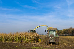 Corn harvester in the Corn crop for the agricultural sector.  Royalty Free Stock Photos