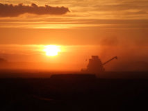 Corn Harvester on Sunset. A Corn Harvester at work in front on Sunset. Strong Red light. Some smoke coming out of the machine Royalty Free Stock Photo
