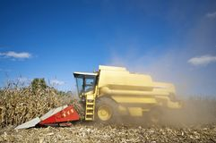 Corn harvesting dusty Stock Photography