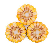 The corn heads of cabbage isolated Stock Photos