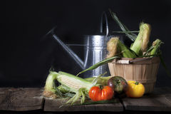 Corn and Heirloom Tomatoes Stock Photography
