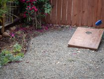 Corn hole game. With bean bag being tossed royalty free stock images