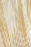 Corn Husk Stock Photography