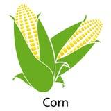 Corn icon Stock Image