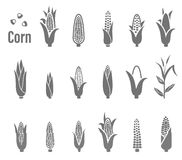 Corn icons. Vector illustration. Stock Images