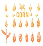 Corn icons. Popcorn silhouette. Corn icons.Vegetarian cuisine vegetable and agriculture ripe harvest. Sweet corn cob maize for grocery store, farmer market Royalty Free Stock Photos