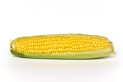 Corn isolated on white Royalty Free Stock Images