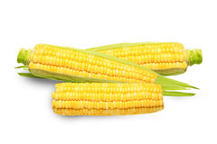 Corn isolated Royalty Free Stock Photography
