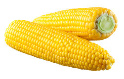 Corn isolated on white. With clipping path Stock Photo