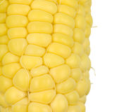 Corn Kernals Close up Royalty Free Stock Photos
