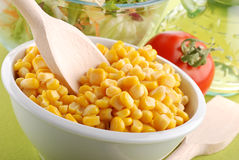 Corn kernels Stock Photography
