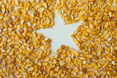 Corn kernels with star-shaped hole. Still life of corn kernels spread out on a white surface with a star-shaped hole in the middle stock images