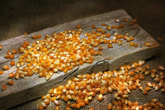 Corn kernels still life Royalty Free Stock Photo
