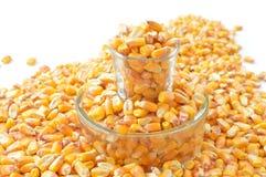 Corn Kernels, Vegetarian Food, Food, Maize Stock Photos