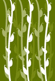 Corn leaf patten. Corn field repetition pattern design in moving upward Stock Images