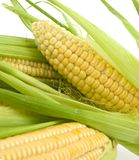 Corn with leaves Royalty Free Stock Photos