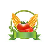 Corn and leaves with tomato and green ribbon isolated Royalty Free Stock Photo
