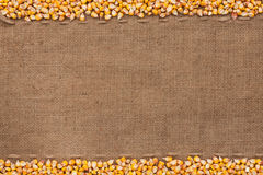 Corn lying on sackcloth Stock Photography