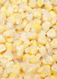 Corn macro background Stock Photos