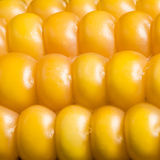 Corn, macro, yellow, ripe, appetizing, food, healt Stock Images