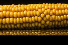 Corn, macro, yellow, ripe, appetizing, food, healt. Macro of ear of corn on black background with reflections. Very appetizing Stock Image