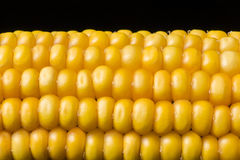 Corn, macro, yellow, ripe, appetizing, food, healt Royalty Free Stock Photo