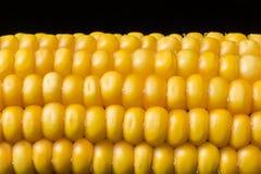 Corn, macro, yellow, ripe, appetizing, food, healt Royalty Free Stock Photo