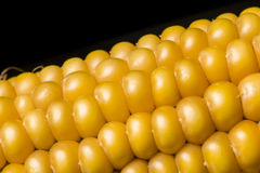 Corn, macro, yellow, ripe, appetizing, food, healt Stock Photo