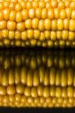 Corn, macro, yellow, ripe, appetizing, food, healthy eating Royalty Free Stock Photography