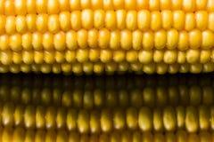 Corn, macro, yellow, ripe, appetizing, food, healthy eating Royalty Free Stock Image