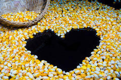 Corn made a heart shape on a black background. Royalty Free Stock Photos