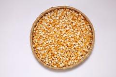 Corn maize Stock Images