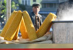 Corn or Maize Cooking on the Streets of Istanbul. Maize, known in some English-speaking countries as corn, is a large grain plant domesticated by indigenous Stock Photos