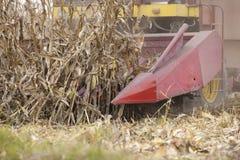 Corn maize harvest time. Combine harvesting ripe corn maize Stock Photography