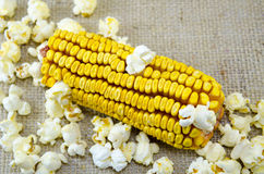 Corn maize and popcorns Stock Photos